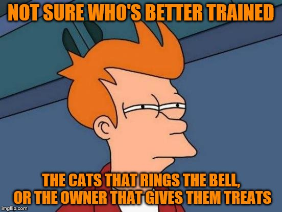 Futurama Fry Meme | NOT SURE WHO'S BETTER TRAINED THE CATS THAT RINGS THE BELL, OR THE OWNER THAT GIVES THEM TREATS | image tagged in memes,futurama fry | made w/ Imgflip meme maker