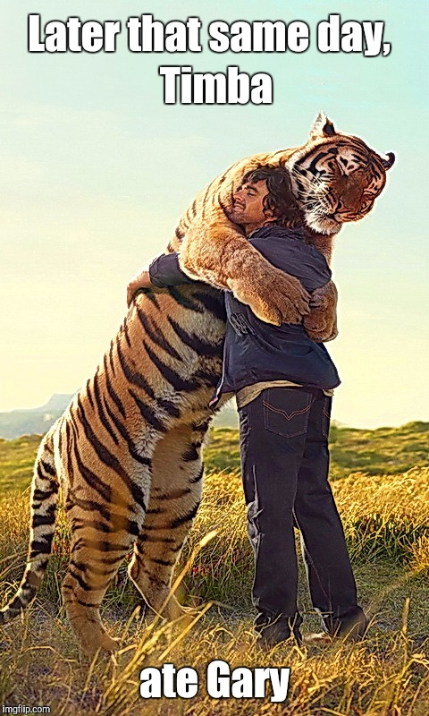 Tiger hugs! | Later that same day, ate Gary Timba | image tagged in cats,tiger,hugs | made w/ Imgflip meme maker