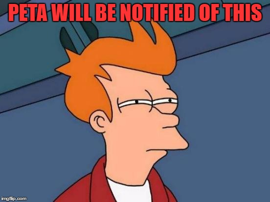 Futurama Fry Meme | PETA WILL BE NOTIFIED OF THIS | image tagged in memes,futurama fry | made w/ Imgflip meme maker