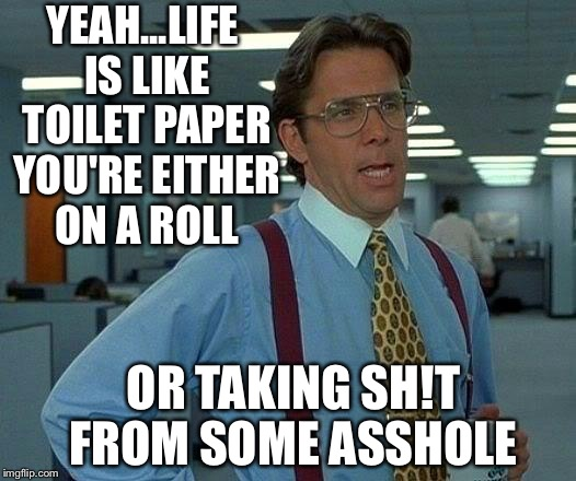 That Would Be Great Meme | YEAH...LIFE IS LIKE TOILET PAPER YOU'RE EITHER ON A ROLL OR TAKING SH!T FROM SOME ASSHOLE | image tagged in memes,that would be great | made w/ Imgflip meme maker