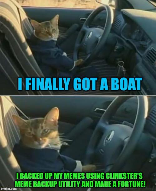 Boat Cat In Car Imgflip