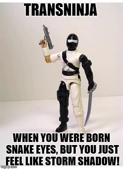 Trans-ninja | TRANSNINJA WHEN YOU WERE BORN SNAKE EYES, BUT YOU JUST FEEL LIKE STORM SHADOW! | image tagged in eye shadow,transgender,transgender awareness week | made w/ Imgflip meme maker