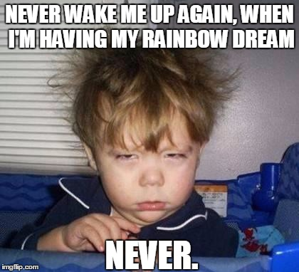 Bed Head Fred | NEVER WAKE ME UP AGAIN, WHEN I'M HAVING MY RAINBOW DREAM NEVER. | image tagged in bed head fred | made w/ Imgflip meme maker
