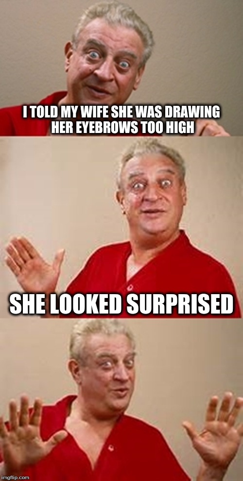 bad pun Dangerfield  | I TOLD MY WIFE SHE WAS DRAWING HER EYEBROWS TOO HIGH SHE LOOKED SURPRISED | image tagged in bad pun dangerfield | made w/ Imgflip meme maker