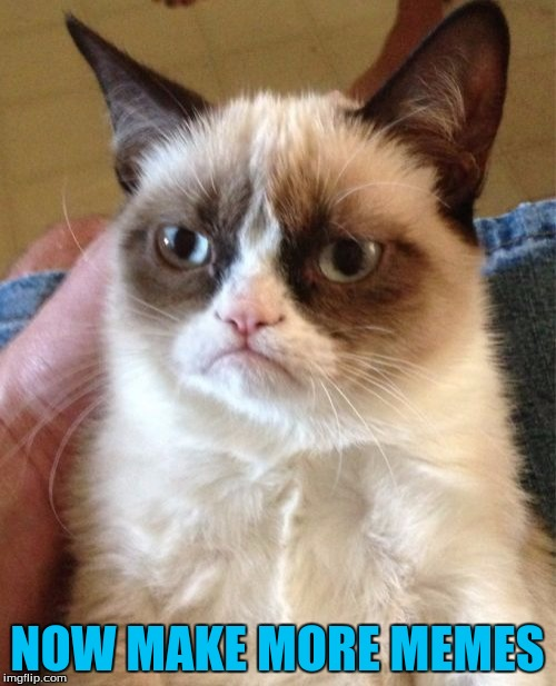 Grumpy Cat Meme | NOW MAKE MORE MEMES | image tagged in memes,grumpy cat | made w/ Imgflip meme maker
