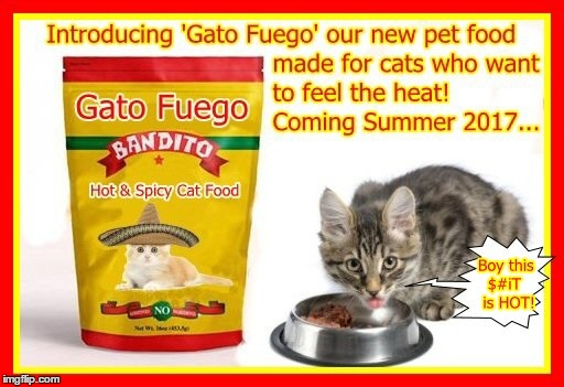 Gato Fuego from Banditio | image tagged in hot and spicy,cat food,april fools | made w/ Imgflip meme maker
