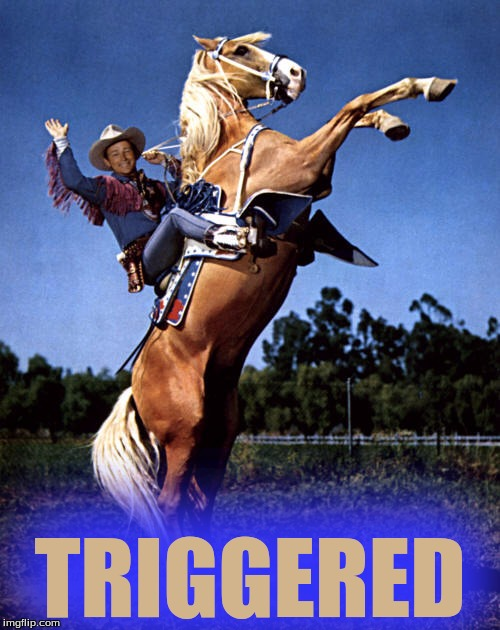 Trigger Triggered | TRIGGERED | image tagged in memes,roy rogers and trigger,triggered | made w/ Imgflip meme maker