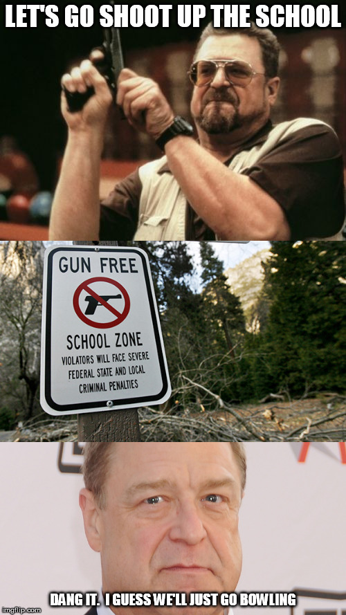 Gun Free Zones save lives | LET'S GO SHOOT UP THE SCHOOL DANG IT.  I GUESS WE'LL JUST GO BOWLING | image tagged in memes,am i the only one around here,gun free zone | made w/ Imgflip meme maker