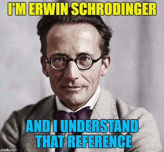 I'M ERWIN SCHRODINGER AND I UNDERSTAND THAT REFERENCE | made w/ Imgflip meme maker