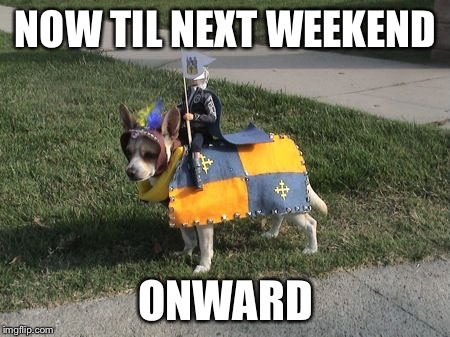 Dog Calvary  | NOW TIL NEXT WEEKEND ONWARD | image tagged in dog calvary | made w/ Imgflip meme maker