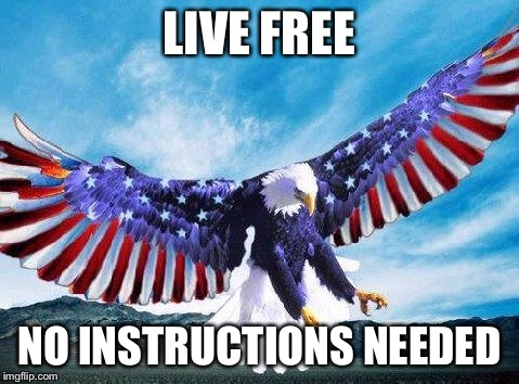 Freedom eagle | LIVE FREE NO INSTRUCTIONS NEEDED | image tagged in freedom eagle | made w/ Imgflip meme maker