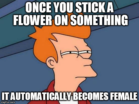 Futurama Fry Meme | ONCE YOU STICK A FLOWER ON SOMETHING IT AUTOMATICALLY BECOMES FEMALE | image tagged in memes,futurama fry | made w/ Imgflip meme maker