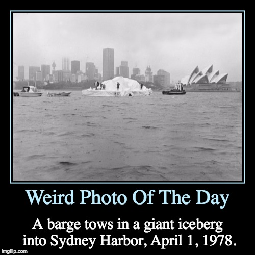 The Sydney Iceberg | Weird Photo Of The Day | A barge tows in a giant iceberg into Sydney Harbor, April 1, 1978. | image tagged in funny,demotivationals,weird,photo of the day,april fool's day,iceberg | made w/ Imgflip demotivational maker