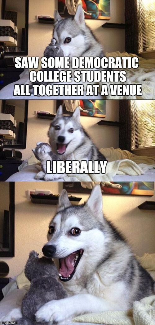 Bad Pun Dog Meme | SAW SOME DEMOCRATIC COLLEGE STUDENTS ALL TOGETHER AT A VENUE LIBERALLY | image tagged in memes,bad pun dog | made w/ Imgflip meme maker