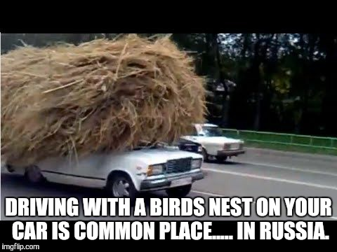 I wanna see a Russian swallow. | DRIVING WITH A BIRDS NEST ON YOUR CAR IS COMMON PLACE..... IN RUSSIA. | image tagged in in soviet russia,meanwhile in russia,damned russians,funny memes,memes | made w/ Imgflip meme maker