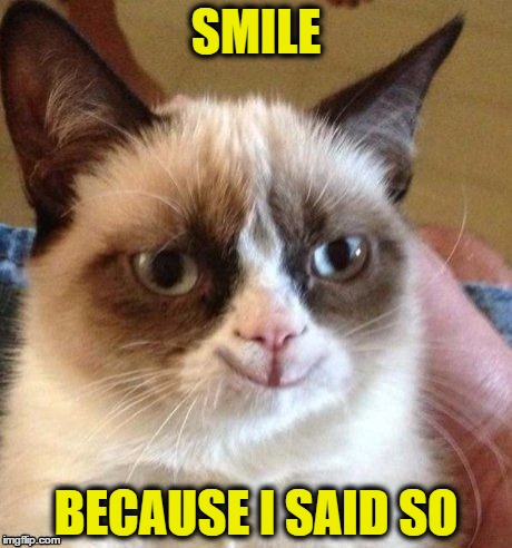 SMILE BECAUSE I SAID SO | image tagged in grumpy smile | made w/ Imgflip meme maker