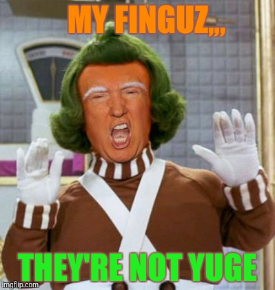 MY FINGUZ,,, THEY'RE NOT YUGE | made w/ Imgflip meme maker