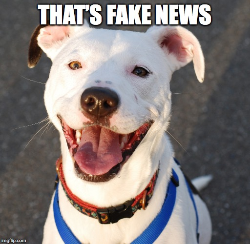 THAT'S FAKE NEWS | made w/ Imgflip meme maker