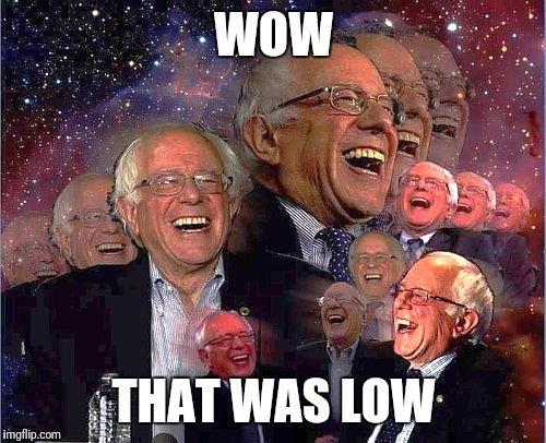 Bernie Laff | WOW THAT WAS LOW | image tagged in bernie laff | made w/ Imgflip meme maker