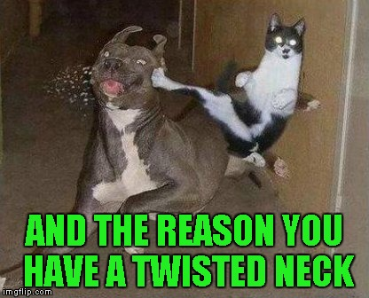 AND THE REASON YOU HAVE A TWISTED NECK | made w/ Imgflip meme maker