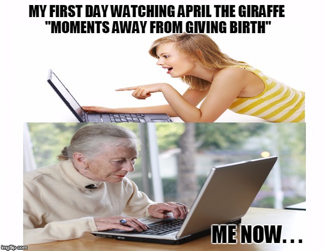 "I was YOUNG when April the Giraffe was going to give birth any moment! | MY FIRST DAY WATCHING APRIL THE GIRAFFE ""MOMENTS AWAY FROM GIVING BIRTH"" ME NOW. . . 