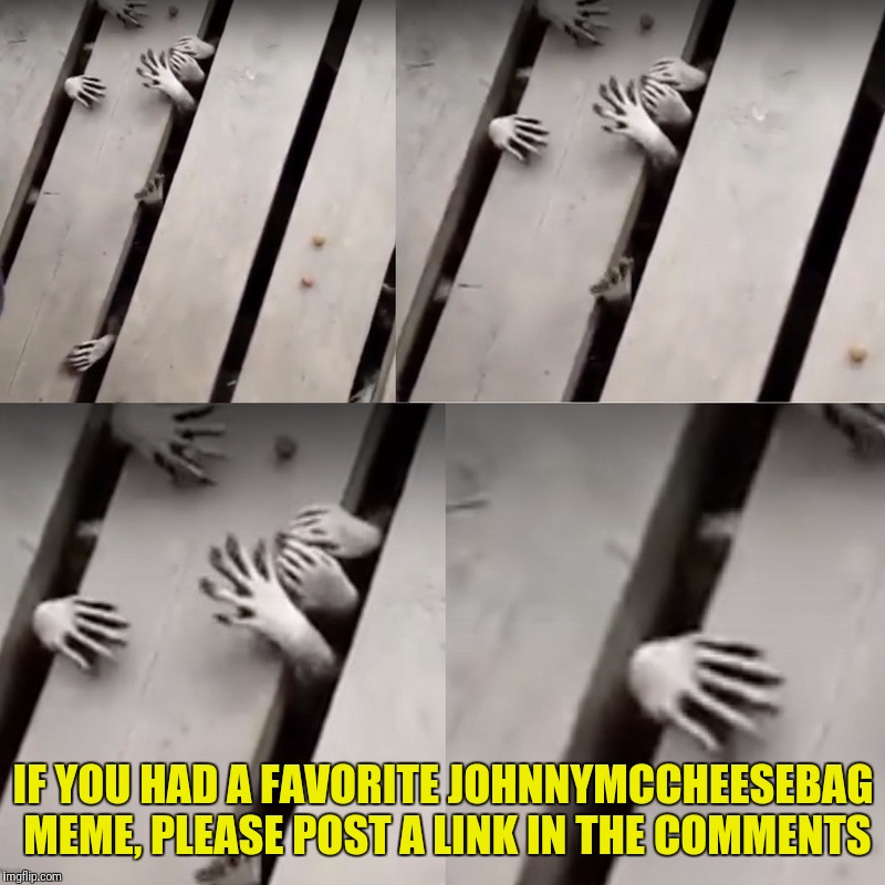 Raccoon Hands | IF YOU HAD A FAVORITE JOHNNYMCCHEESEBAG MEME, PLEASE POST A LINK IN THE COMMENTS | image tagged in raccoon hands | made w/ Imgflip meme maker