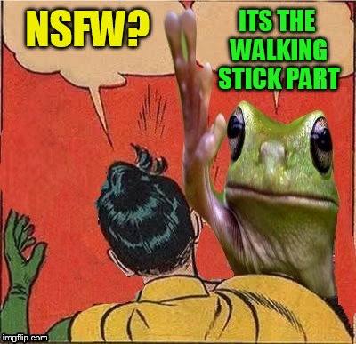 NSFW? ITS THE WALKING STICK PART | made w/ Imgflip meme maker