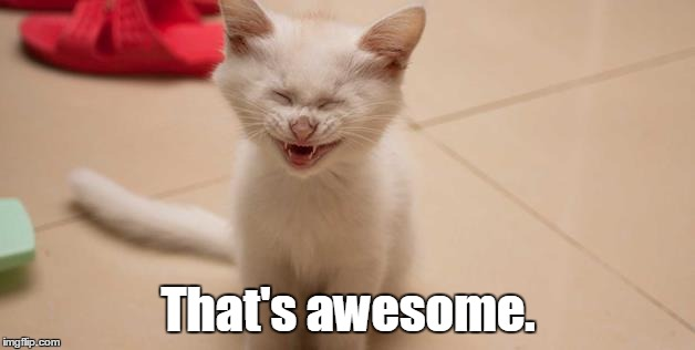 Cat Laughing | That's awesome. | image tagged in cat laughing | made w/ Imgflip meme maker