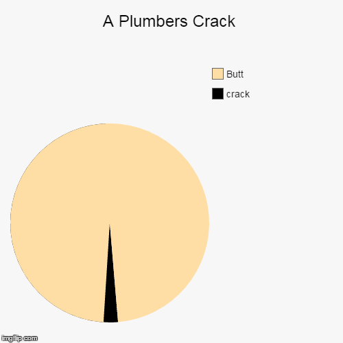 99% of plumbers have this | A Plumbers Crack | crack, Butt | image tagged in funny,pie charts,plumbers crack | made w/ Imgflip pie chart maker