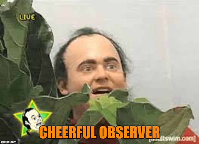 CHEERFUL OBSERVER | made w/ Imgflip meme maker