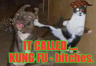 IT CALLED .... KUNG FU - b**ches. | made w/ Imgflip meme maker