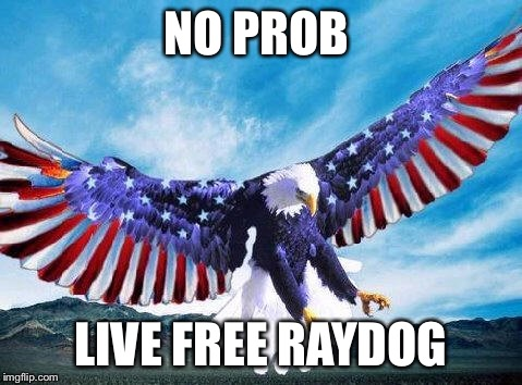 Freedom eagle | NO PROB LIVE FREE RAYDOG | image tagged in freedom eagle | made w/ Imgflip meme maker