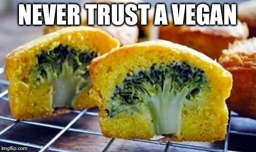 NEVER TRUST A VEGAN | image tagged in vegan | made w/ Imgflip meme maker