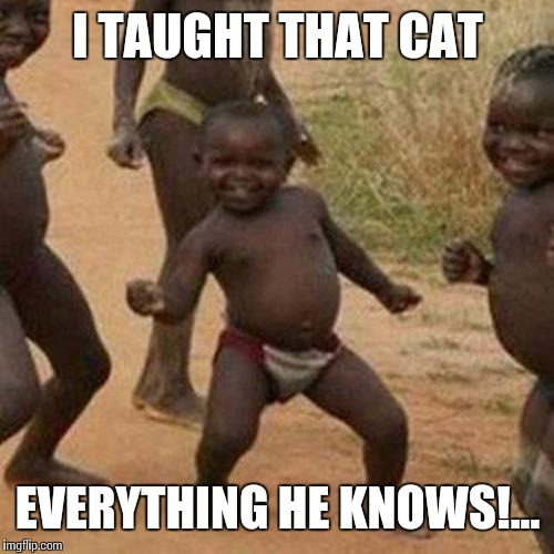 Third World Success Kid Meme | I TAUGHT THAT CAT EVERYTHING HE KNOWS!... | image tagged in memes,third world success kid | made w/ Imgflip meme maker