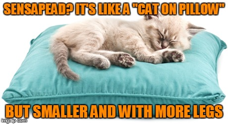 "SENSAPEAD? IT'S LIKE A ""CAT ON PILLOW"" BUT SMALLER AND WITH MORE LEGS 