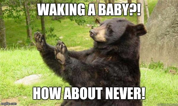 WAKING A BABY?! HOW ABOUT NEVER! | made w/ Imgflip meme maker