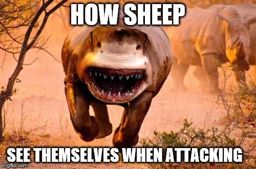 Rino Shark | HOW SHEEP SEE THEMSELVES WHEN ATTACKING | image tagged in rino shark | made w/ Imgflip meme maker