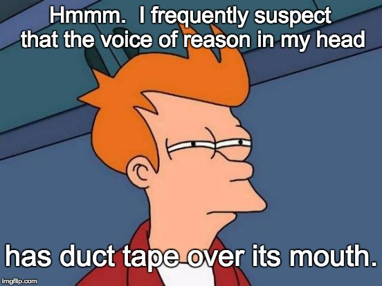 Futurama Fry Meme | Hmmm.  I frequently suspect that the voice of reason in my head has duct tape over its mouth. | image tagged in memes,futurama fry | made w/ Imgflip meme maker