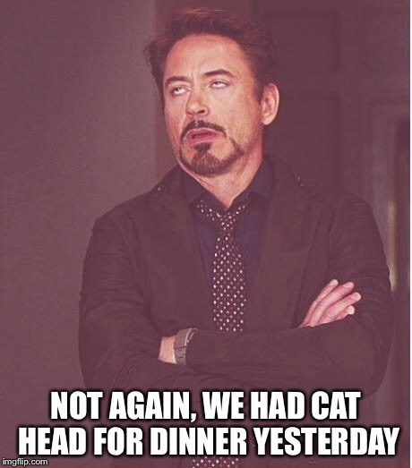 Face You Make Robert Downey Jr Meme | NOT AGAIN, WE HAD CAT HEAD FOR DINNER YESTERDAY | image tagged in memes,face you make robert downey jr | made w/ Imgflip meme maker