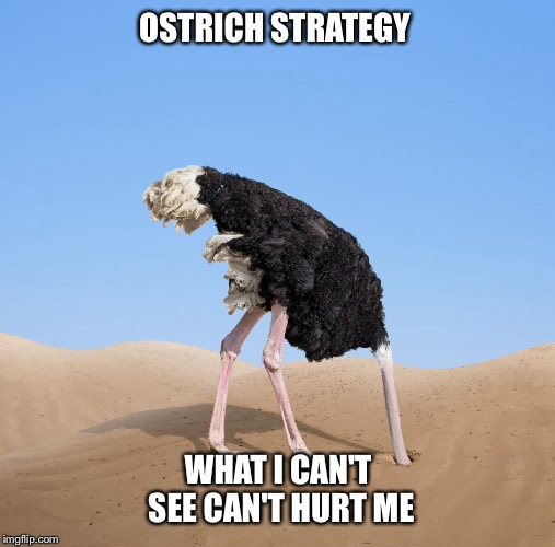 OSTRICH STRATEGY WHAT I CAN'T SEE CAN'T HURT ME | made w/ Imgflip meme maker