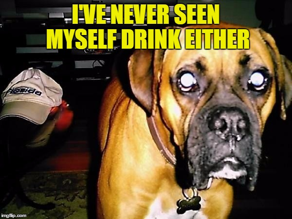 I'VE NEVER SEEN MYSELF DRINK EITHER | made w/ Imgflip meme maker