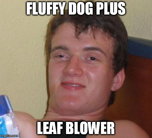 10 Guy Meme | FLUFFY DOG PLUS LEAF BLOWER | image tagged in memes,10 guy | made w/ Imgflip meme maker