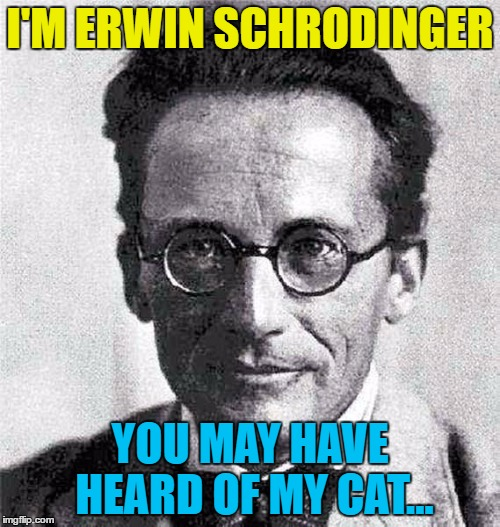 What did he do with his dog? | I'M ERWIN SCHRODINGER YOU MAY HAVE HEARD OF MY CAT... | image tagged in schrodinger,memes,schrodingers cat,cats,animals,big bang theory | made w/ Imgflip meme maker