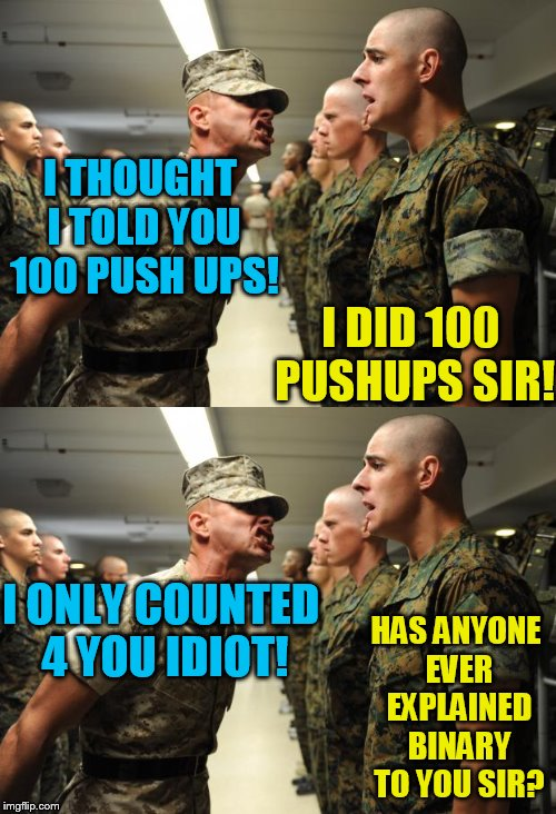 I'm no binary expert, but I get the drift! | I THOUGHT I TOLD YOU 100 PUSH UPS! HAS ANYONE EVER EXPLAINED BINARY TO YOU SIR? I DID 100 PUSHUPS SIR! I ONLY COUNTED 4 YOU IDIOT! | image tagged in binary,tammyfaye,hayden would not have worked for this joke | made w/ Imgflip meme maker