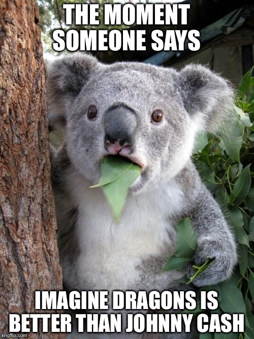 Surprised Koala | THE MOMENT SOMEONE SAYS IMAGINE DRAGONS IS BETTER THAN JOHNNY CASH | image tagged in memes,surprised koala,johnny cash,imagine dragons | made w/ Imgflip meme maker