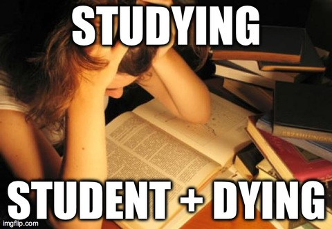 STUDYING STUDENT + DYING | image tagged in studying,college,funny | made w/ Imgflip meme maker