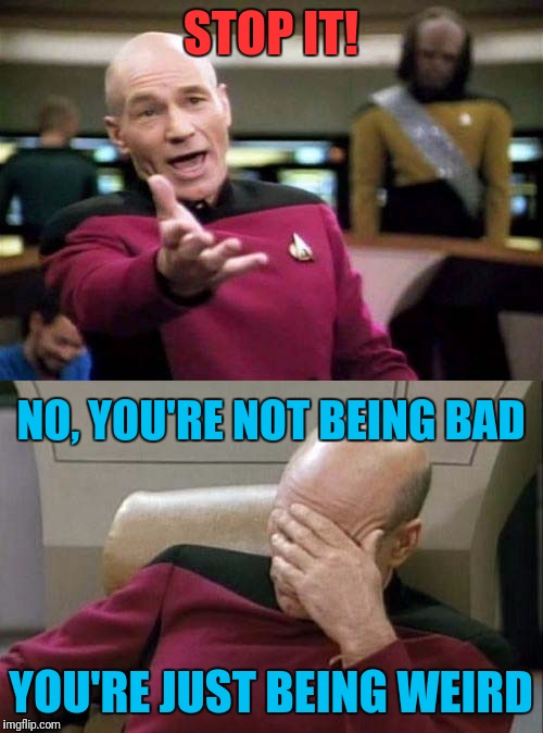 Me scolding my kids | STOP IT! YOU'RE JUST BEING WEIRD NO, YOU'RE NOT BEING BAD | image tagged in picard wtf and facepalm combined | made w/ Imgflip meme maker