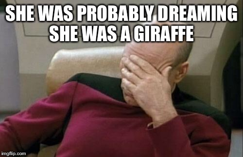 Captain Picard Facepalm Meme | SHE WAS PROBABLY DREAMING SHE WAS A GIRAFFE | image tagged in memes,captain picard facepalm | made w/ Imgflip meme maker