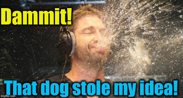 Dammit! That dog stole my idea! | made w/ Imgflip meme maker