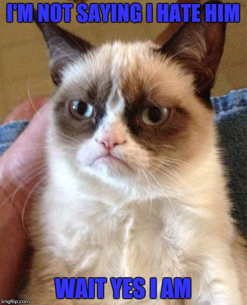 Grumpy Cat Meme | I'M NOT SAYING I HATE HIM WAIT YES I AM | image tagged in memes,grumpy cat | made w/ Imgflip meme maker